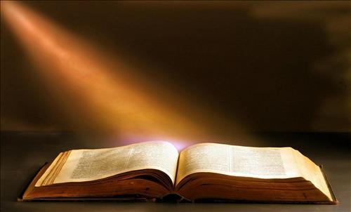 Suy niệm Lời Chúa hằng ngày tuần XI Thường Niên: Lm. Phêrô Phạm Ngọc Lê